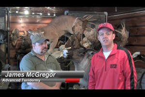 1Source Video: Taxidermy Maintenance Tips