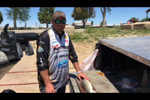 1Source Video: Best Way to Fillet a Walleye