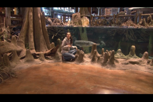 1Source Video: Pampered Fish at Bass Pro Shops Aquariums