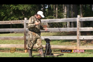 1Source Video: Hunting Dog Training: Set the Foundation for Your Pup