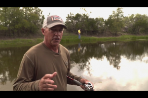 1Source Video: Clark Wendlandt's Pond Fishing Fun Bait Tips