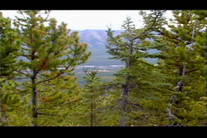 1Source Video: Elk Hunt with Bob Foulkrod in British Columbia