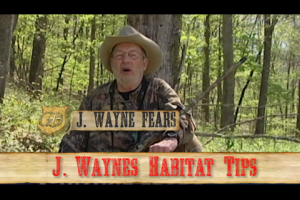 1Source Video: Do You Want Wild Hogs On Your Property?