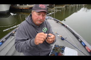 1Source Video: Denny Brauer Jig Color Secrets