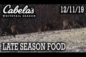 Late Season Whitetail Hunt