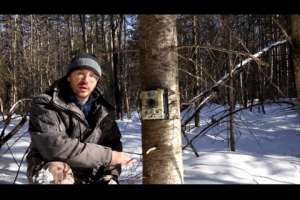 1Source Video: Trail Camera Tips and Tactics