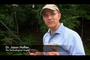 1Source Video: Select The Best Trees For Summer Panfish