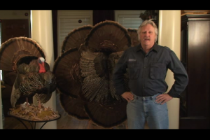 1Source Video: How to Make a Large Turkey Wall Hanging