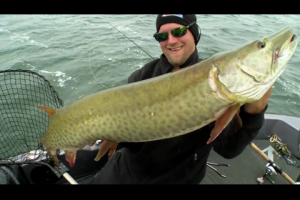 1Source Video: Pete Maina: Why NITRO's ZV21 is for Muskie Anglers