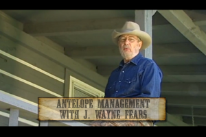 1Source Video: Antelope Management