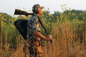 News & Tips: Shotgun and Gear Choices for Dove Hunting...
