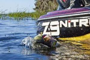 News & Tips: 6 Key Tips & Baits for Topwater Bass Fishing...