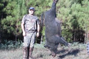 Hog photo by: RICK SLIVA