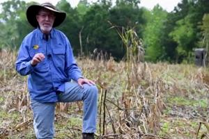 News & Tips: Tips for Easy Fall Food Plots Plus Scouting and Patterning Bucks (video)...