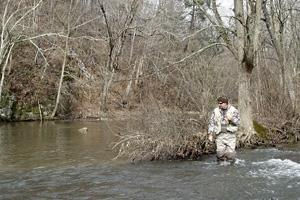News & Tips: The Promise of Spring Creek Trout
