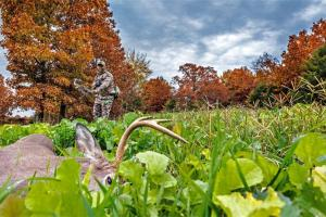 News & Tips: 12 Tips to Recovering Every Deer You Shoot...