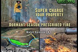 News & Tips: Prescribed Fire: Improving Whitetail Habitat (video)...