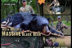 News & Tips: Bow Hunting BIG Bears and Whitetails: In Range and DOWN! (video)...
