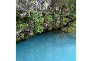 News & Tips: Hiking the Blue Spring Trail in the Missouri Ozarks...