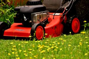 News & Tips: How Mowing Your Lawn Can Make You a Better Bowhunter...