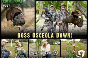 News & Tips: Turkey Hunting: First Hunt for 2015, Osceola Gobbler Down! (video)...