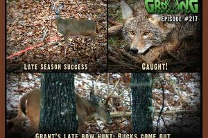 News & Tips: Bow Hunting: Shooting Deer, That's Why We're Here!...