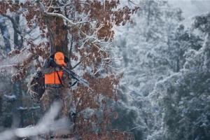 News & Tips: Stay Put in Your Treestand with These 5 Tips...