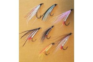 News & Tips: Why You May Be Wrong About Bucktail Flies...