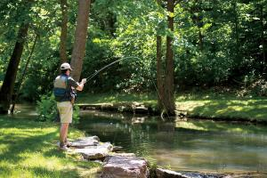 News & Tips: Using Bead Heads in Fly Fishing