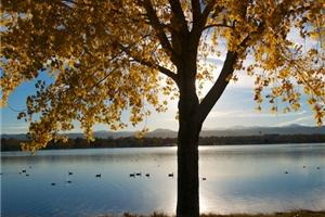 News & Tips: 8 Tips to Photograph the Vivid Colors of Fall...