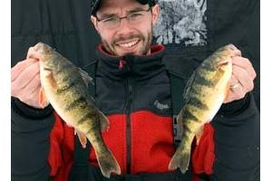 News & Tips: Perch Ice-Fishing Tips and Strategies