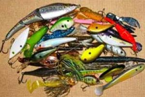 News & Tips: Fishing and the Color Game