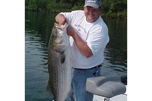 News & Tips: 4 Live Fishing Bait Strategies for Summer Striped Bass...