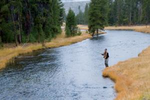 News & Tips: What to Look for in Fly Fishing Vests & Fishing Packs...