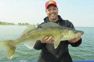 News & Tips: 3 Key Tips for Catching Some River Walleye Action (video)...