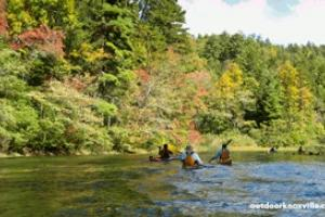 News & Tips: 10 Outdoor Activities in Knoxville, Tennessee...
