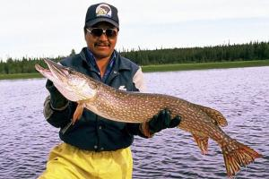 News & Tips: A Primer on Pike—Lures and Tactics for Catching Northern Pike...