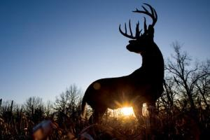 News & Tips: How Off-Season Deer Hunting with a Camera Can Help Next Hunting Season...
