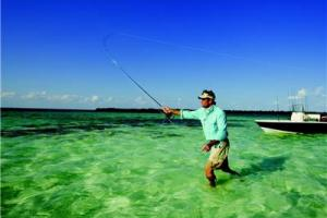 News & Tips: Loop Shapes for Fly Casting: Saltwater Fishing Tip...