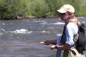 News & Tips: Fishing Yellowstone Cutthroat Trout in Southeast Idaho...