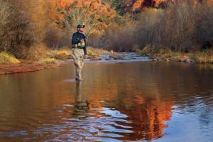 News & Tips: Experts Discuss Apache & Gila Trout Recovery on Bass Pro Shops Outdoor World Radio...