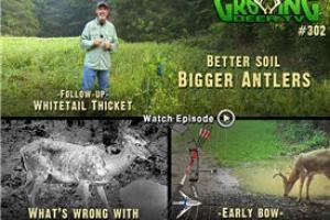 News & Tips: Early Season Deer Hunting Strategies (video)...