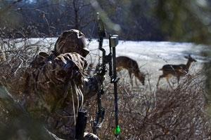 News & Tips: Tips for Low-Impact Deer Hunting: All About the Scent...