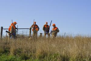 A group of five pheasant hunters and a dog standing in a field talking