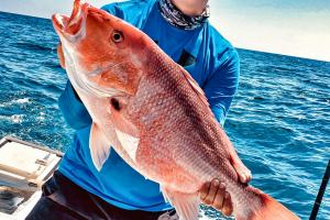Angler holding up a large saltwater Red Snapper