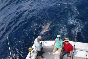 Three anglers sitting on the back edge of the boat looking up as a shark follows the camera angle is shot from above