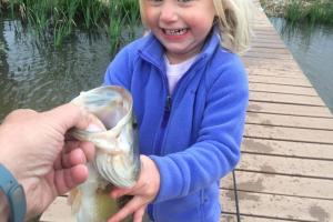 Young girl reaching for and touching a bass