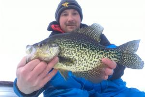 Nice CPR'd Black Crappie From Northern Wisconsin