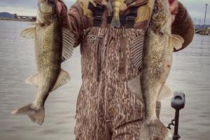 Walleye angler holding two fish with hands and one fish in his mouth