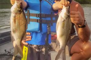 Father and son with two stripe bass
